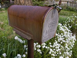 mailbox and flowers